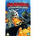 Dragons: Defenders Of Berk - Part 1 [DVD]