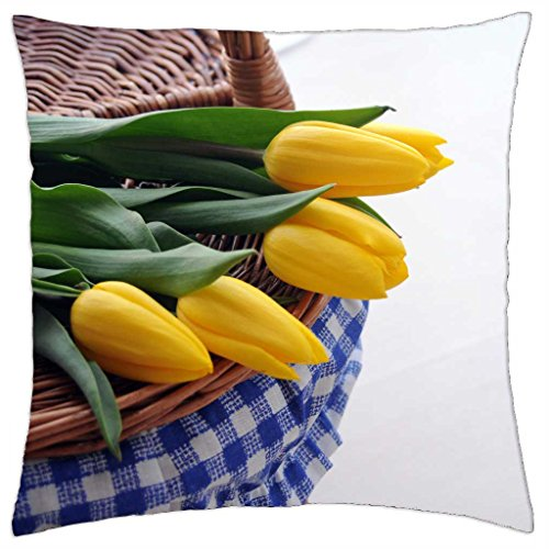 picnic-time-throw-pillow-cover-case-18-x-18