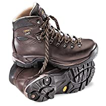 Asolo Mens TPS 520 GV Hiking Chestnut Leather Boot 10 M US