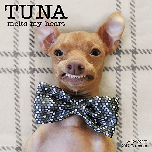Tuna the Dog Wall Calendar (2017)