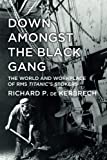 Down Amongst the Black Gang: The World and Workplace of RMS Titanic's Stokers