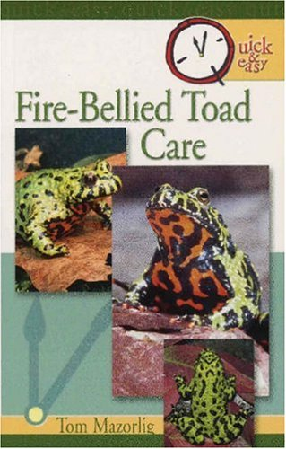 Fire-Bellied Toad (Quick & Easy)