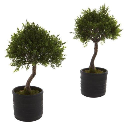 Nearly Natural - 4965-S2 - Cedar Bonsai w/Planter (Set of 2)