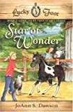 Star of Wonder (Lucky Foot Stable)