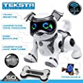 "Teksta ""Voice Recognition Puppy"" Toy"