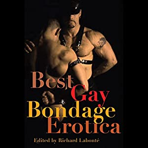Best Gay Bondage Erotica Audiobook