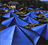 img - for The Umbrellas: Japan-USA book / textbook / text book