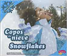 Copos de nieve/Snowflakes (Todo sobre el invierno/All