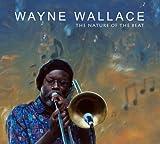 Besame Mucho - Wayne Wallace