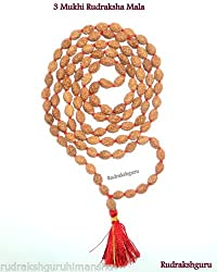 3 Mukhi Rudraksha Mala / Surya Siddha Mala / Agni Siddha Mala - 109 beads - Java