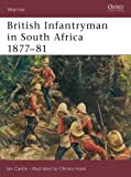 img - for British Infantryman in South Africa 1877-81 (Warrior) book / textbook / text book