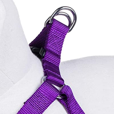Blueberry Pet Step-in Harnesses Classic Solid No Pull Dog Harness Adjustable Made For Last - Dark Orchid
