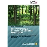 El Foro Consultivo Económico y Social del MERCOSUR: Un análisis de su evolución. Percepciones y expectativas de...