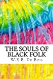Image of The Souls of Black Folk: Includes MLA Style Citations for Scholarly Secondary Sources, Peer-Reviewed Journal Articles and Critical Essays (Squid Ink Classics)
