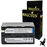 Sony DCR-VX2000 Camcorder Battery Lithium-Ion (6900 mAh) - Halcyon Replacement for Sony NP-F970 Battery