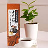 小川珈琲とコーヒーの木のセット