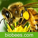 BioBees - The Barefoot Beekeper Podcast App Talking About The Natural Approach To Beekeeping