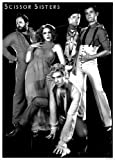Scissor Sisters Music Group Poster 11.7