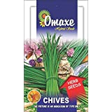 Omaxe Chives Imported Herb - 50 Seeds Pack Herb Seeds