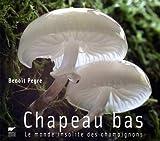 Chapeau bas : Le monde insolite des champignons