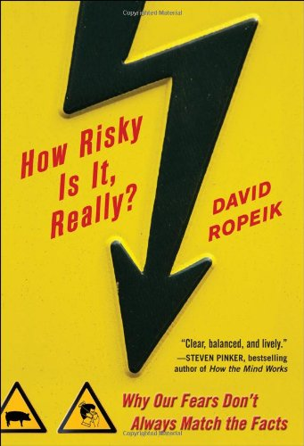 How Risky Is It, Really?