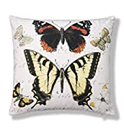 Botanical Butterfly Print Cushion