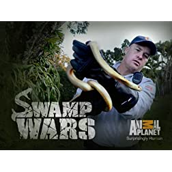 Swamp Wars Season 2