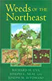 img - for Weeds of the Northeast book / textbook / text book