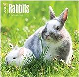 Rabbits 2015 Square 12x12