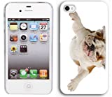 Apple iPhone 4 4S 4G White 4W188 Hard Back Case Cover Color Cute English Bulldog Laying Upside Down
