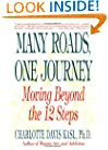 Many Roads One Journey: Moving Beyond the 12 Steps
