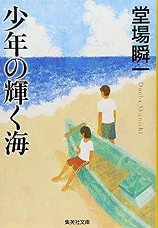 少年の輝く海 (集英社文庫)