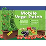 Creative Motion Vegetable Patch Moving