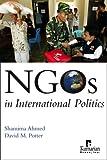 NGOs in International Politics