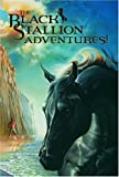 img - for The Black Stallion Adventures! (Box Set) book / textbook / text book