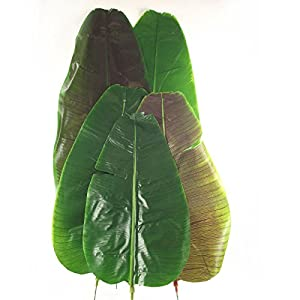 Meena supplies giant extra large artificial for Artificial banana leaves decoration