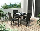 Sonax Z-306-TPP Park Terrace 5-Piece Patio Dining Set