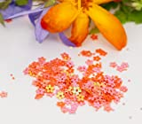 Nail Art - Pink/Orange Flowers