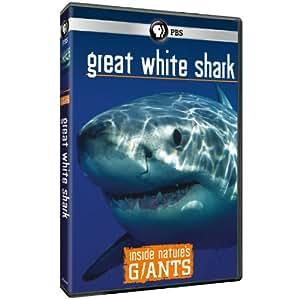 Inside Nature's Giants: Great White Shark
