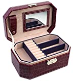 BlushBees Two Layer Leather Jewelry Box Organizer with Lock & Mirror