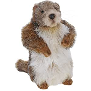 Anima - Peluche Marmotte - 25 cm