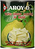 Aroy-D Young Green Jackfruit In Brine 20 oz
