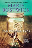 img - for The Promise Girls book / textbook / text book