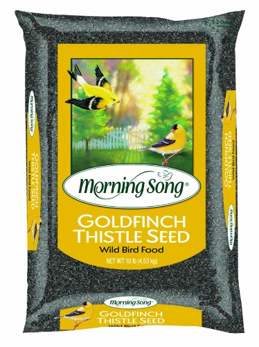 Morning Song 1015146 Goldfinch Thistle Wild Bird Food, 10-Pound