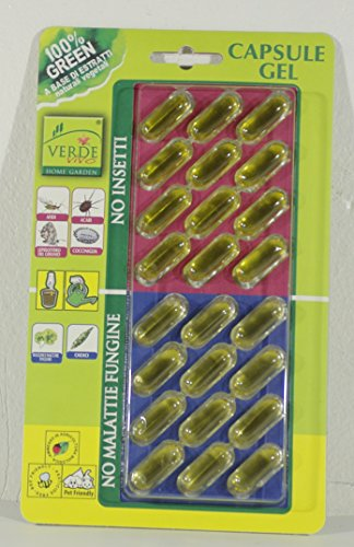 kein-pilz-diseases-no-gel-kapseln-kapseln-packung-von-24-bug-12-12