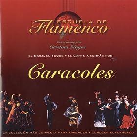 Amazon.com: Caracoles: Cante, Baile y Guitarra: José Manuel Flores