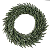 Vickerman Unlit Frosted Bellevue Alpine Artificial Christmas Wreath, 42-Inch