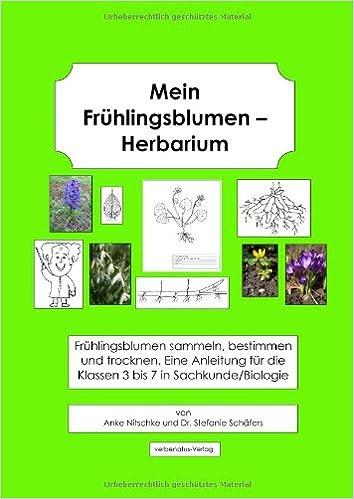 mein fr hlingsblumen herbarium fr hlingsblumen sammeln bestimmen. Black Bedroom Furniture Sets. Home Design Ideas