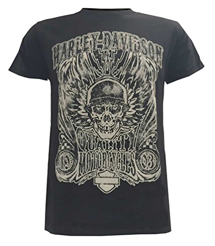 Harley-Davidson Mens Overload Skull Distressed Shirt Black 30298305 (2XL)