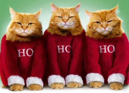 Avanti Christmas Cards, Ho Ho Ho, 10 Count